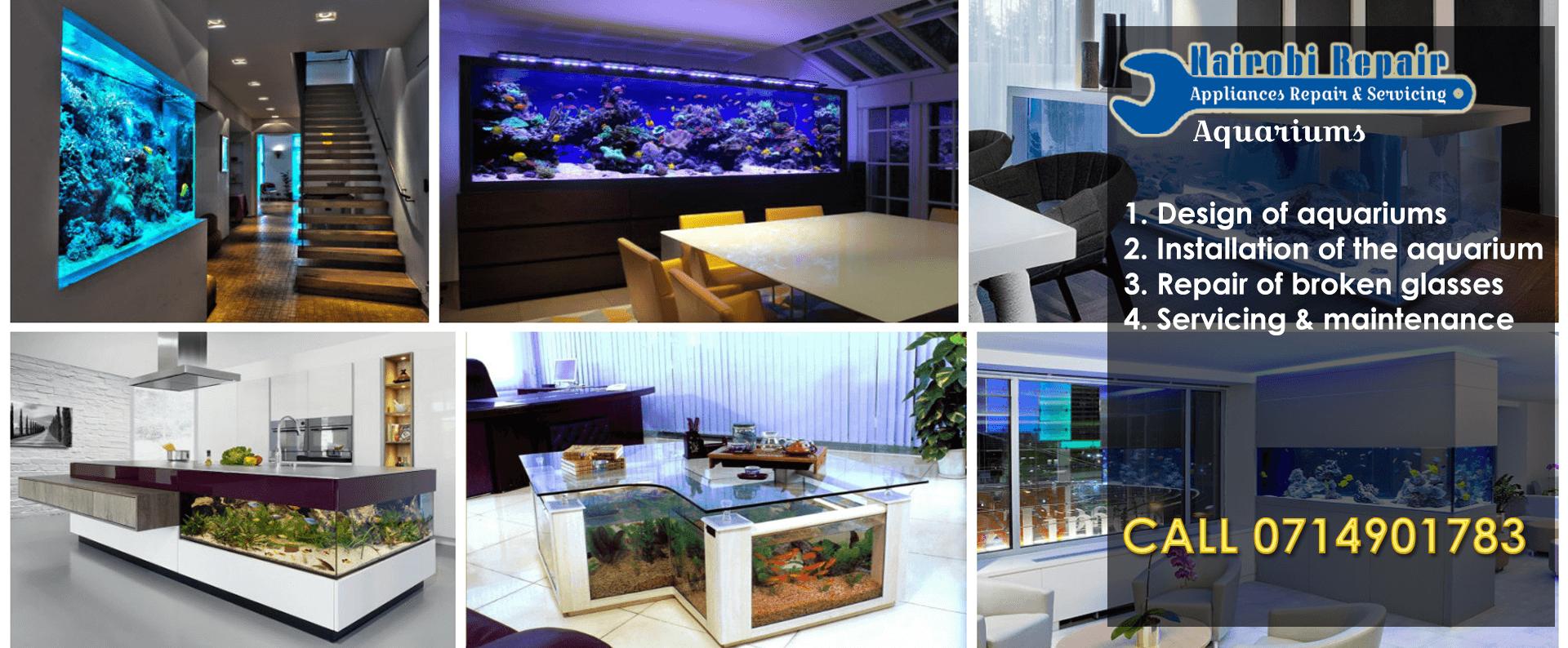 Aquarium services - Nairobi, Kenya